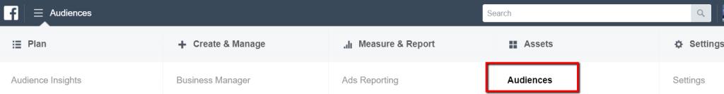 facebook audience tab