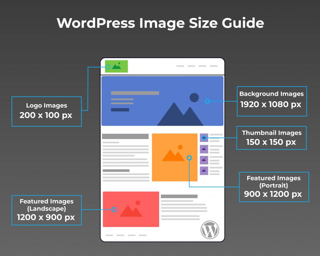 WordPress image size chart